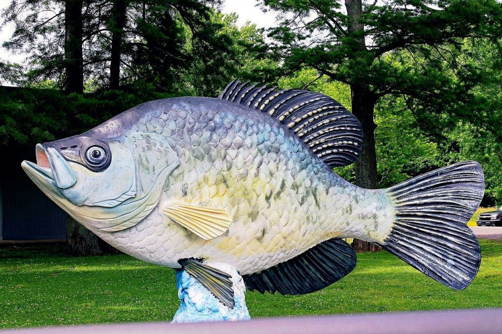 best crappie lakes in Michigan