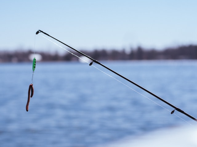 how to catch mullet with a fishing pole